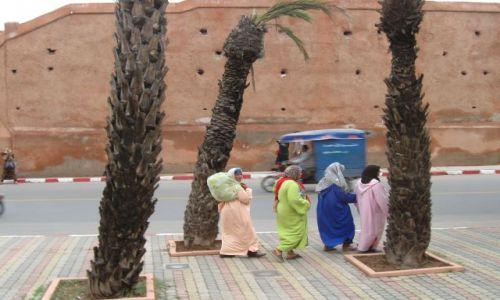 Zdjęcie MAROKO / - / Marrakesz / w drodze na targowisko