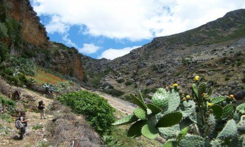 Zdjęcie MAROKO / Góry Rif / okolice Szefszawan / W górach Rif