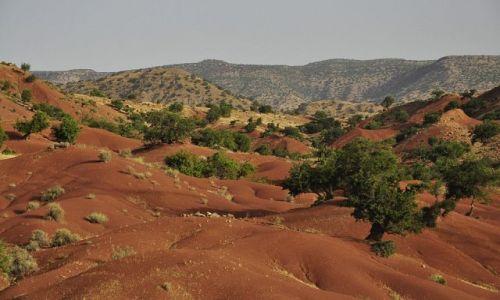 Zdjecie MAROKO / - / Maroko / Czerwona planet