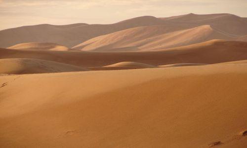 Zdjęcie MAROKO / brak / Merzouga / Sahara