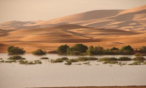 Zdjecie MAROKO / brak / Merzouga / Sahara
