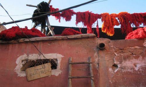Zdjecie MAROKO / - / marrakesh / marrakesh-farbiarnia wełny