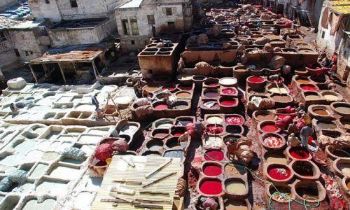 Zdjecie MAROKO / Fès-Boulemane / Fes / Grande Tannerie- ponoć największa garbarnia w Fez