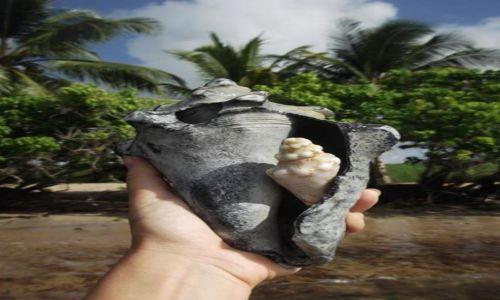 Zdjęcie MARTYNIKA (FRANCJA) / x / x / Martinika