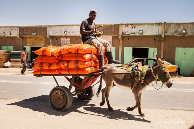 Zdjęcia: Mauretania , African Road Trip - transport w Mauretanii , MAURETANIA