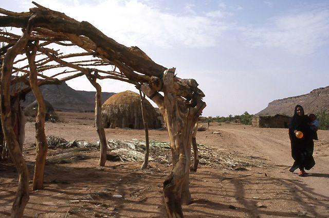 Zdj�cia: oaza Teizent, masyw Adraru, chaty w oazie, MAURETANIA