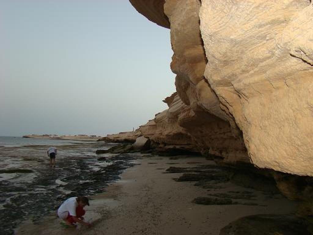 Zdjęcia: plaża po odpływie, Nadibu, Odpływ, MAURETANIA