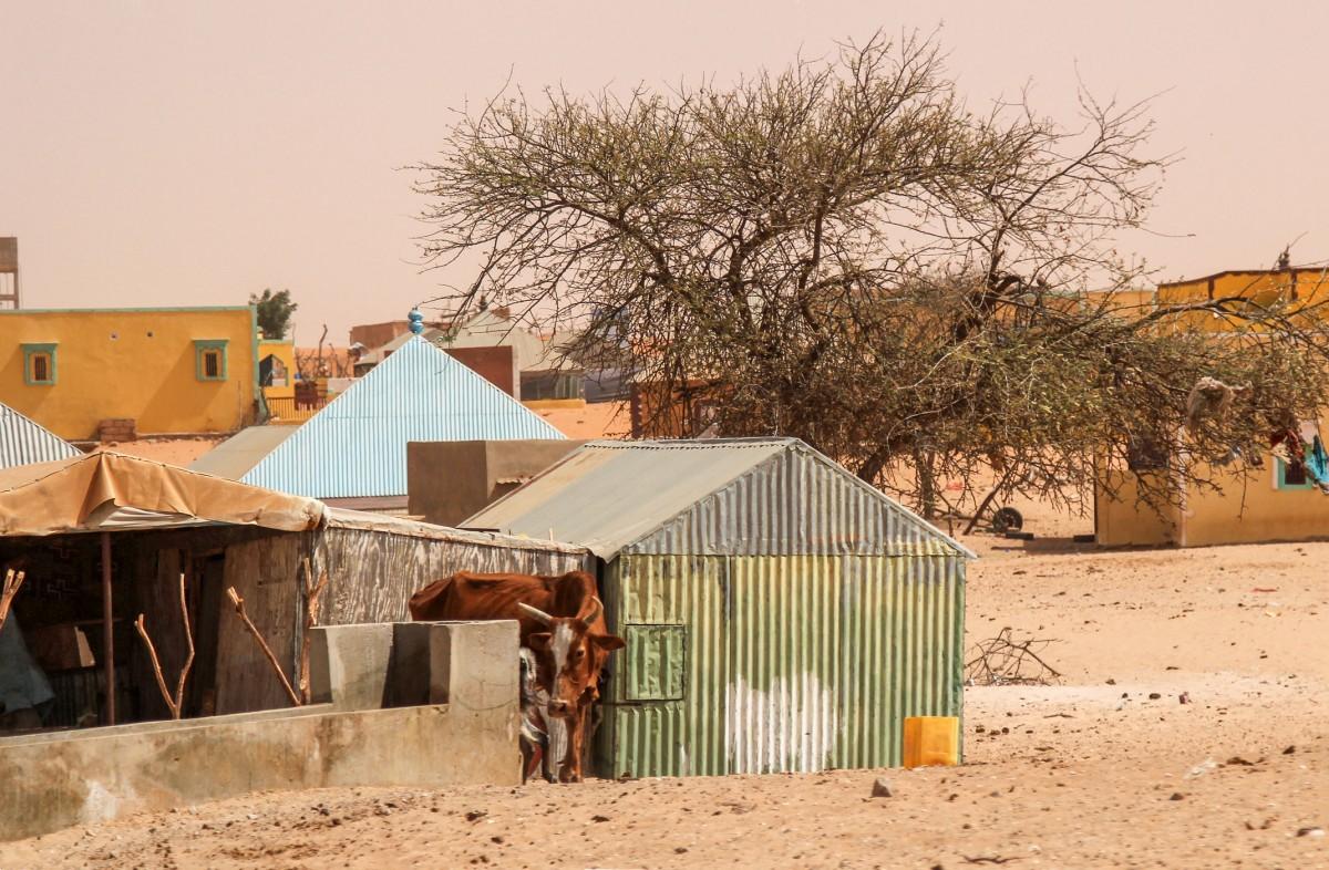 Zdjęcia: wioska,  delta rzeki Senegal , Podglądając życie w wiosce, MAURETANIA