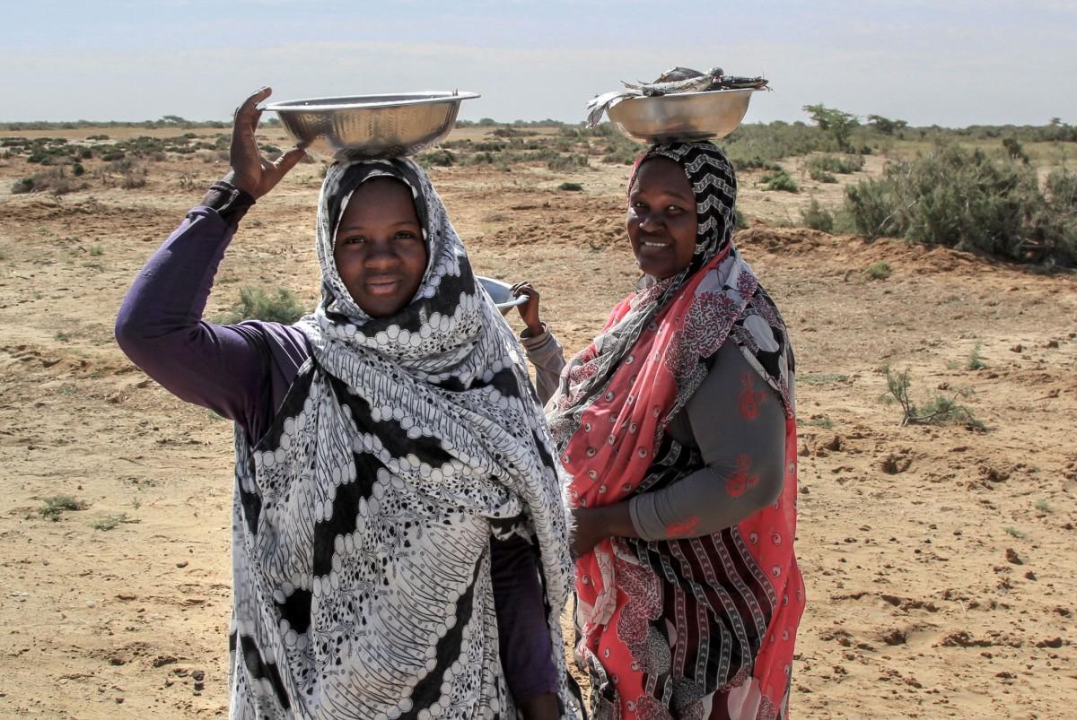 Zdjęcia: gdzieś po drodze, Sahel, Świeże ryby , MAURETANIA