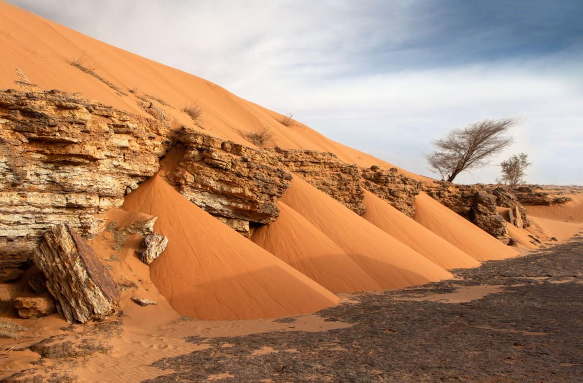 Zdjęcia: gdzieś w piaskach pustyni, Tagant, Klepsydra, MAURETANIA
