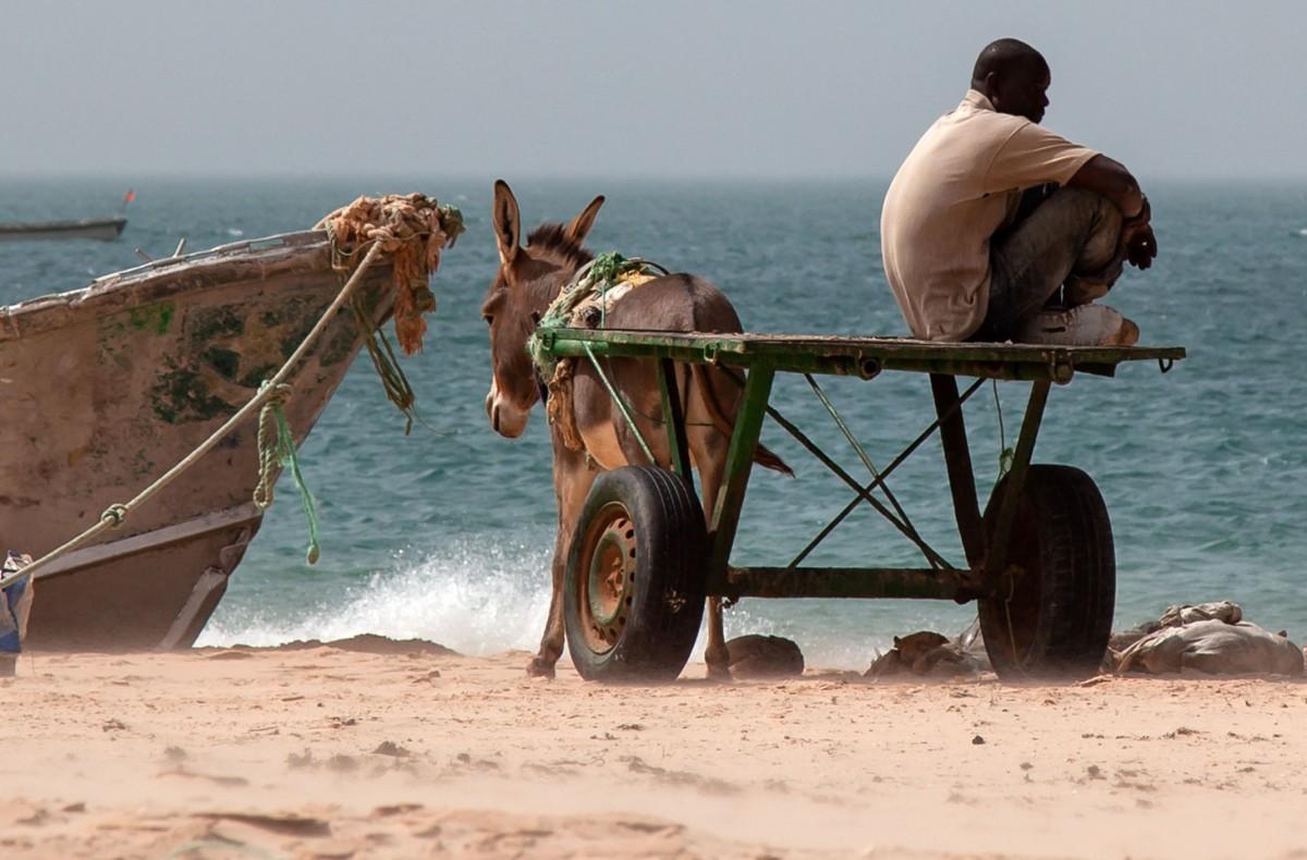 Zdjęcia: Tiwilit, Trarza, Ruch w rybackiej osadzie, MAURETANIA