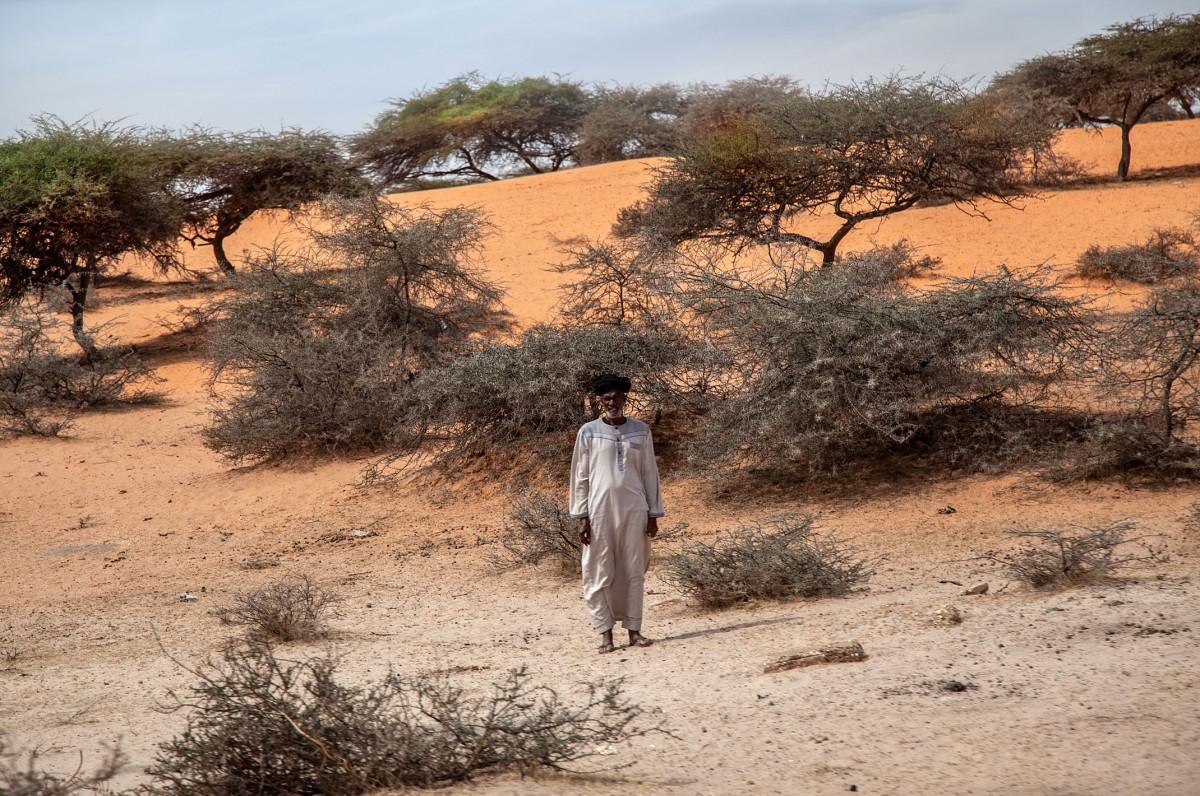 Zdjęcia: gdzieś po drodze, Mauretania, Człowiek pustyni, MAURETANIA