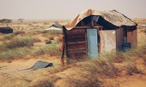 Zdjecie MAURETANIA / Sahara / Sahara / Mauretańska chałupa