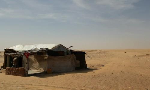 Zdjecie MAURETANIA / Sahel / Sahel / Co by mi chałupy nie rozjechali