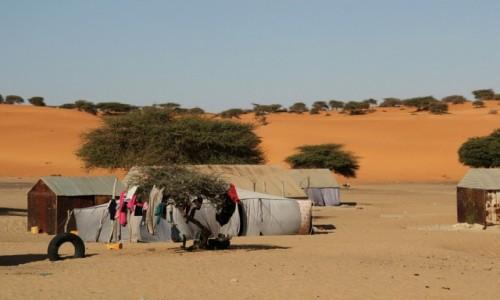 Zdjecie MAURETANIA / Sahel / Sahel / Bezchmurne niebo,można suszyć pranie