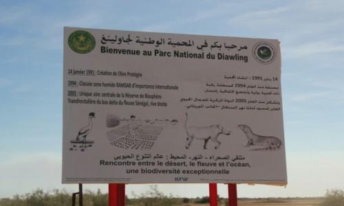 Zdjęcie MAURETANIA / Park Narodowy Diawling / Park Narodowy Diawling / Po bezdrożach Mauretanii