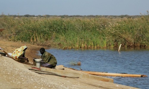 Zdjęcie MAURETANIA / Parc National du Diawling / Parc National du Diawling / Po bezdrożach Mauretanii