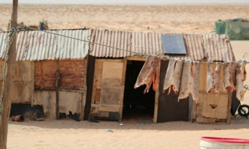 Zdjecie MAURETANIA / Sahel / gdzieś przy głównej drodze / Sklepik z rybami