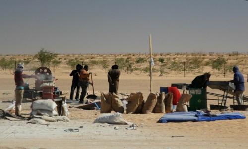 Zdjecie MAURETANIA / Sahel / Sahel / Producent wapna