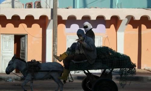 Zdjecie MAURETANIA / Sahel / Sahel / Jedziemy po kózkę