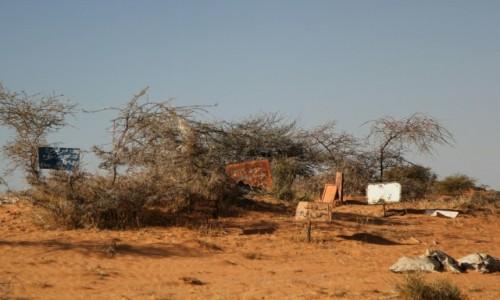 Zdjęcie MAURETANIA / okolice El Jaamee / przy drodze / Cmentarz w Mauretanii