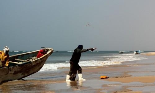 Zdjecie MAURETANIA / Mauretania / nad Oceanem Atlantyckim / Jedna na śniadanie