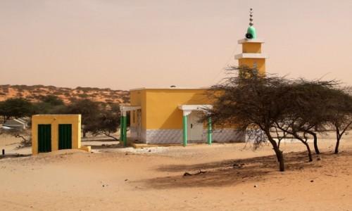 Zdjecie MAURETANIA / Mauretania / gdzieś po drodze / Coś dla ducha