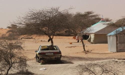 Zdjecie MAURETANIA / Mauretania / gdzieś po drodze / Na podwórku