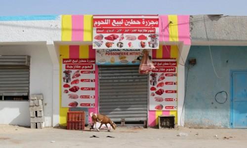 Zdjecie MAURETANIA / Mauretania / gdzieś po drodze / Ciekawe ile jestem warta...