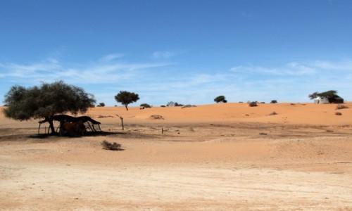 MAURETANIA / Mauretania / gdzieś po drodze /  Po sąsiedzku
