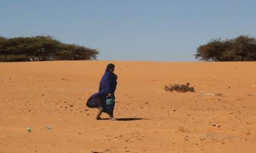 Zdjecie MAURETANIA / Mauretania / gdzieś po drodze / Spacer po wodę