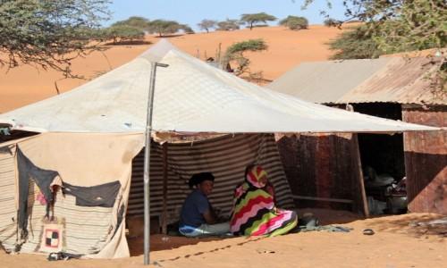 Zdjecie MAURETANIA / Mauretania / gdzieś po drodze / Dezaprobata