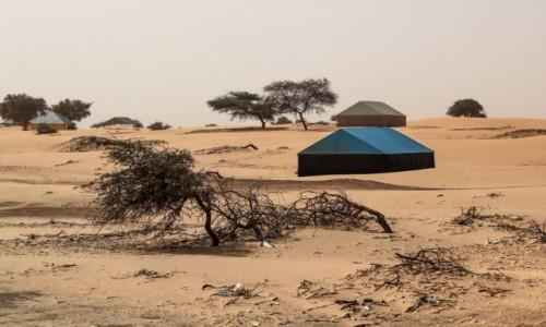 Zdjecie MAURETANIA /  Nouakchott / gdzieś po drodze / Chałupy