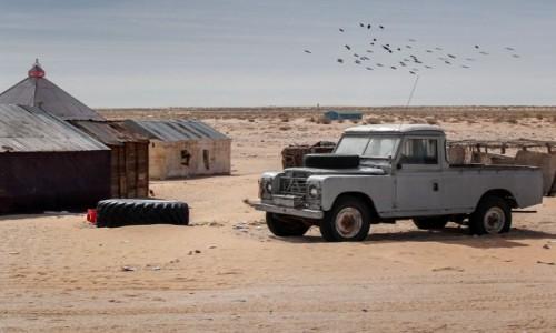 Zdjecie MAURETANIA / Mauretania / gdzieś po drodze / Przydrożna Mauretania