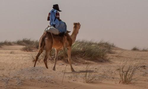 Zdjecie MAURETANIA / Mauretania / gdzieś po drodze / W podróży
