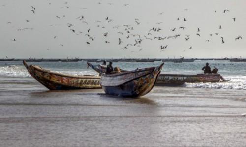 MAURETANIA / Nawakszut / nad Atlantykiem / W porcie rybackim