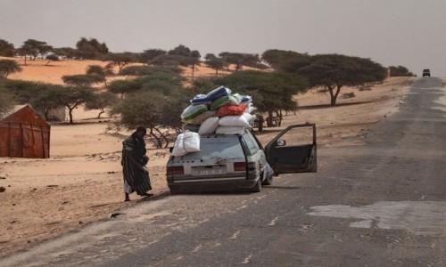 Zdjecie MAURETANIA / Mauretania / gdzieś po drodze / W drogę!