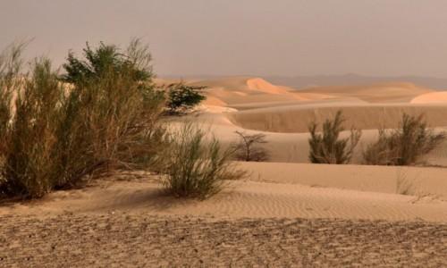 MAURETANIA / Mauretania / gdzieś po drodze / Mauretańskie piaski