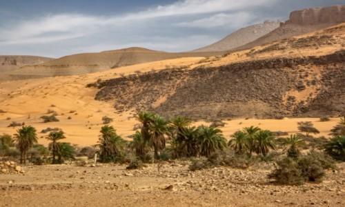 MAURETANIA / Adrar / gdzieś po drodze / Pustynny region Adrar