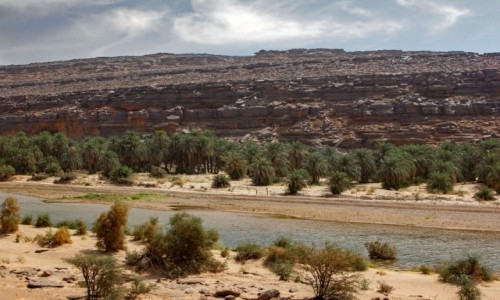 MAURETANIA / Adrar / nad rzeką / Wādī Sakallīl
