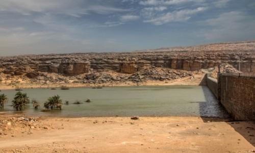 Zdjecie MAURETANIA / Adrar / nad rzeką / Tama na Wādī Sakallīl