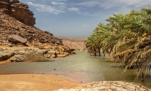 MAURETANIA / Adrar / Wādī Sakallīl / Nad rzeką