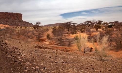 Zdjecie MAURETANIA / Al-Asaba / gdzieś po drodze / Mauretańskie widoki