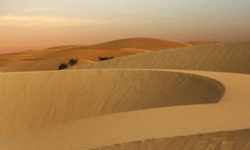MAURETANIA / Tagant / gdzieś w piaskach pustyni / Kolory piasku