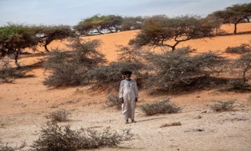 MAURETANIA / Mauretania / gdzieś po drodze / Człowiek pustyni
