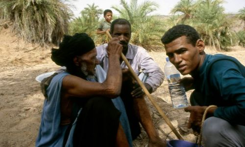 MAURETANIA / masyw Adraru / oaza Teizent / spotkanie w gaju palmowym