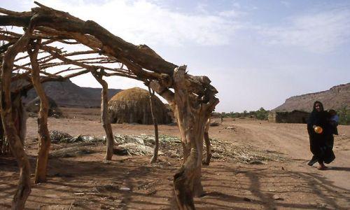 MAURETANIA / masyw Adraru / oaza Teizent / chaty w oazie