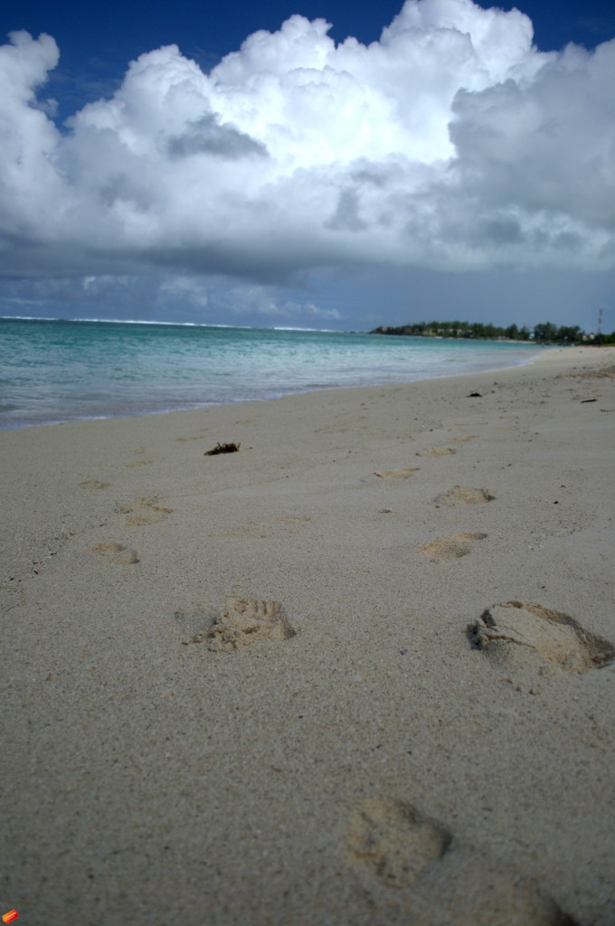 Zdjęcia: Mauritius, ocean Indyjski, MAURITIUS