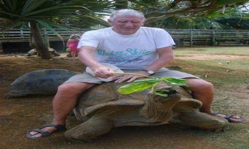 Zdjecie MAURITIUS / - / Wyspa Mauritius / Żółw