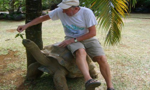 Zdjecie MAURITIUS / - / Wyspa  Mauritius / KONKURS    Jazda na żółwiu   Mauritius